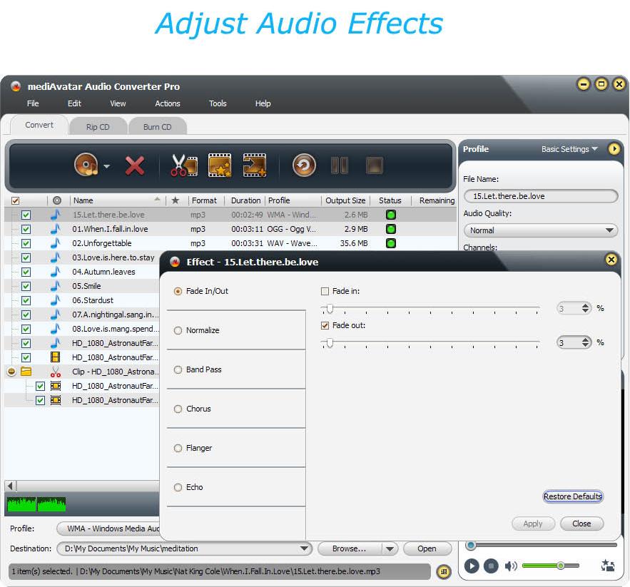 Audio Software, mediAvatar Audio Converter Pro Screenshot