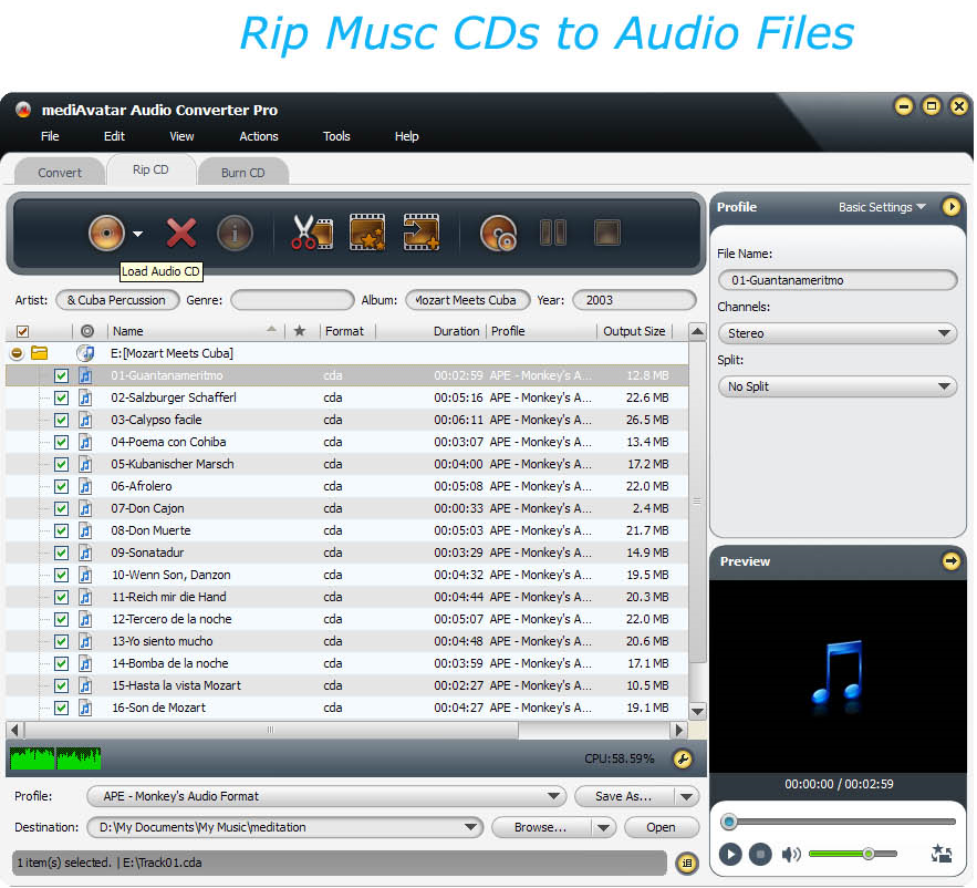 mediAvatar Audio Converter Pro, Audio Conversion Software Screenshot