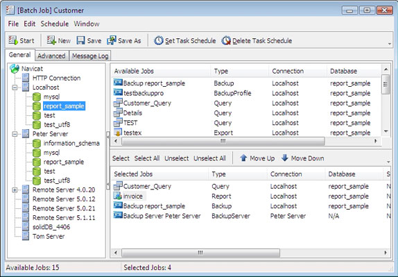 Navicat for MySQL Standard Screenshot 8