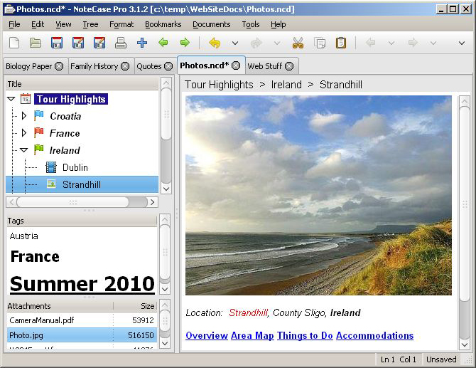 To-Do List Software Screenshot