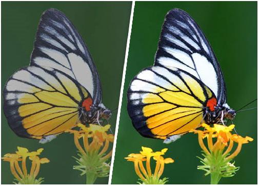 Photo Manipulation Software, PhotoPlus Screenshot