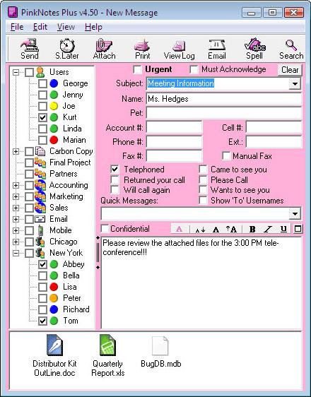 PinkNotes Plus Screenshot