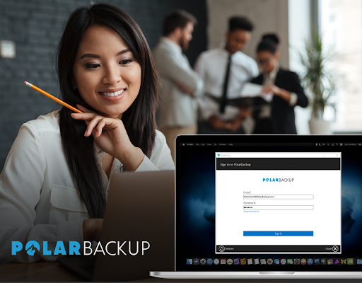 Polar Backup Business - Yearly Screenshot
