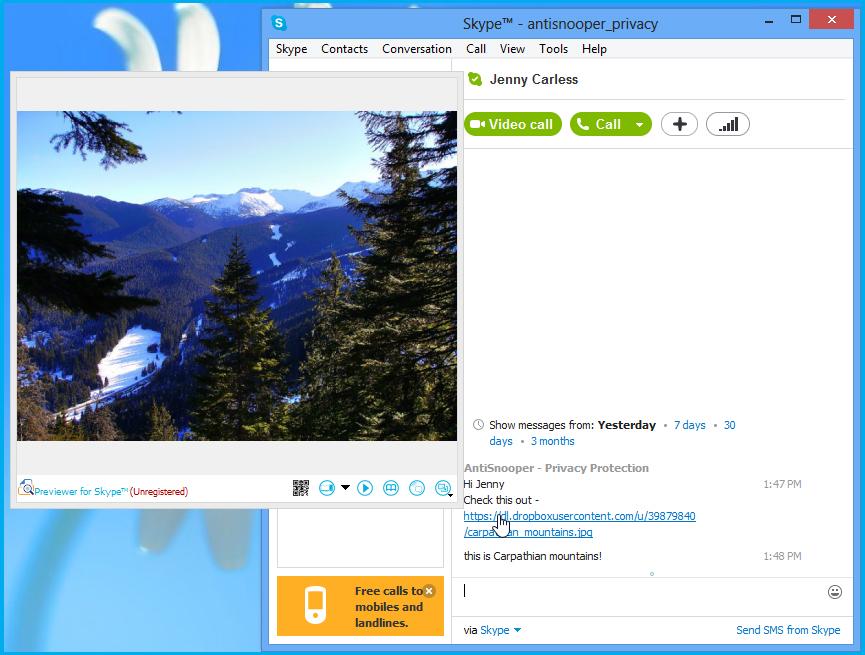 Previewer for Skype™ Screenshot