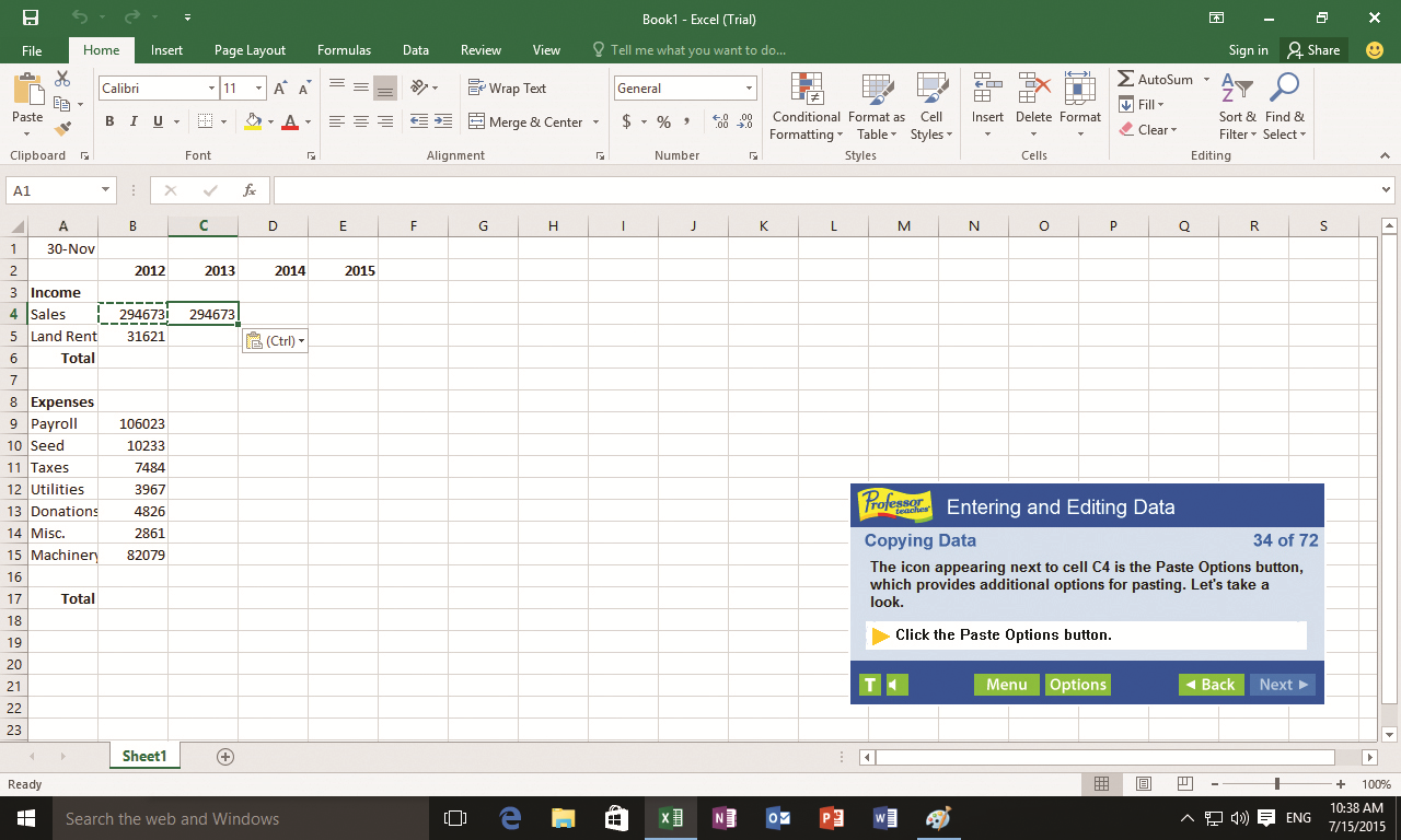 Professor Teaches Excel 2019 Screenshot