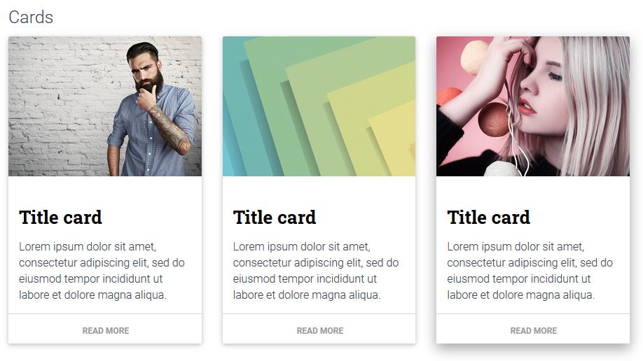 Real Material UI Kit, Website Builder Software Screenshot