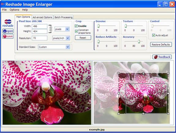 Photo Manipulation Software, Reshade Image Enlarger Lite Screenshot