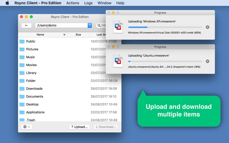 Rsync Client - Pro Edition Screenshot