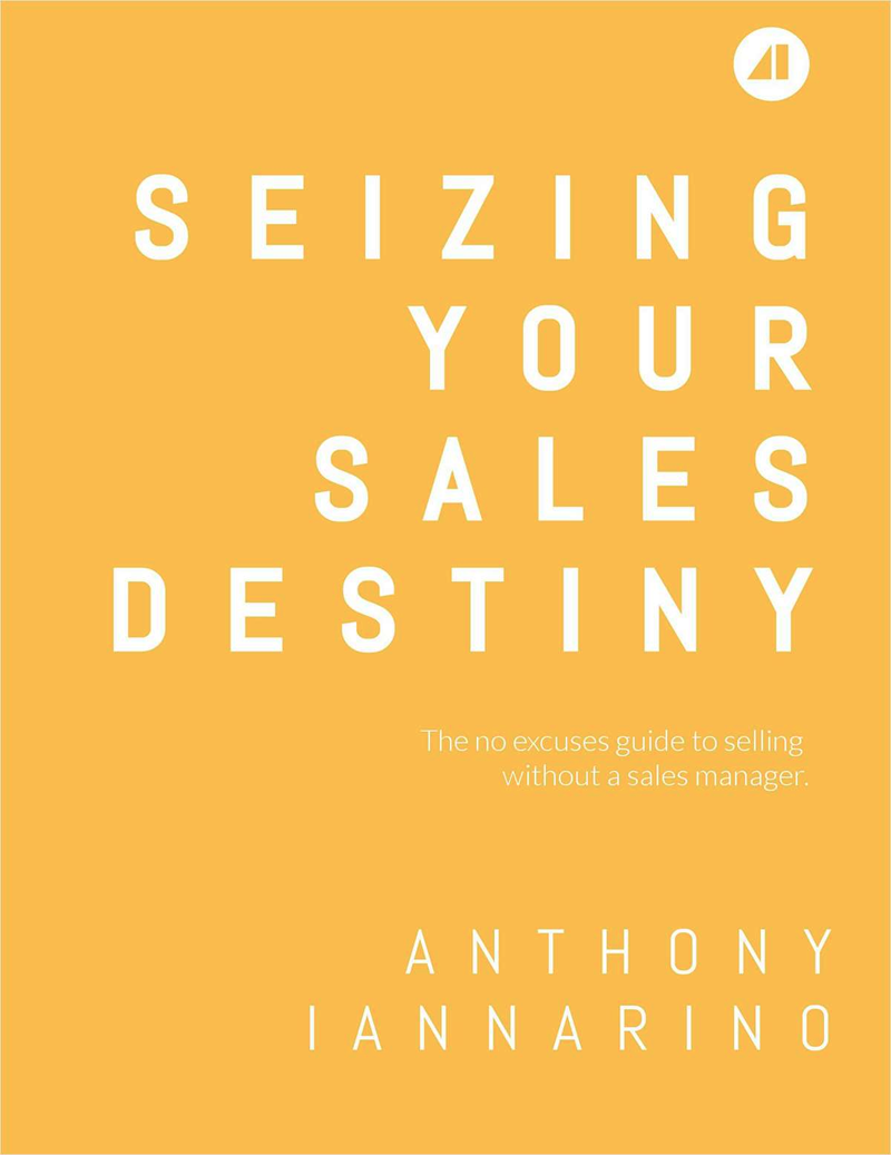 Seizing Your Sales Destiny Screenshot