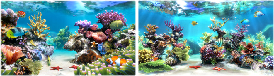 Sim Aquarium PLATINUM, Screensaver Software Screenshot
