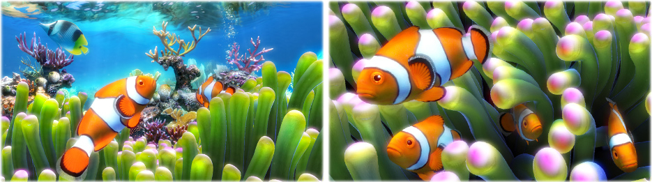 Sim Aquarium PLATINUM Screenshot