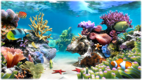 Sim Aquarium PLATINUM, Desktop Customization Software, Screensaver Software Screenshot