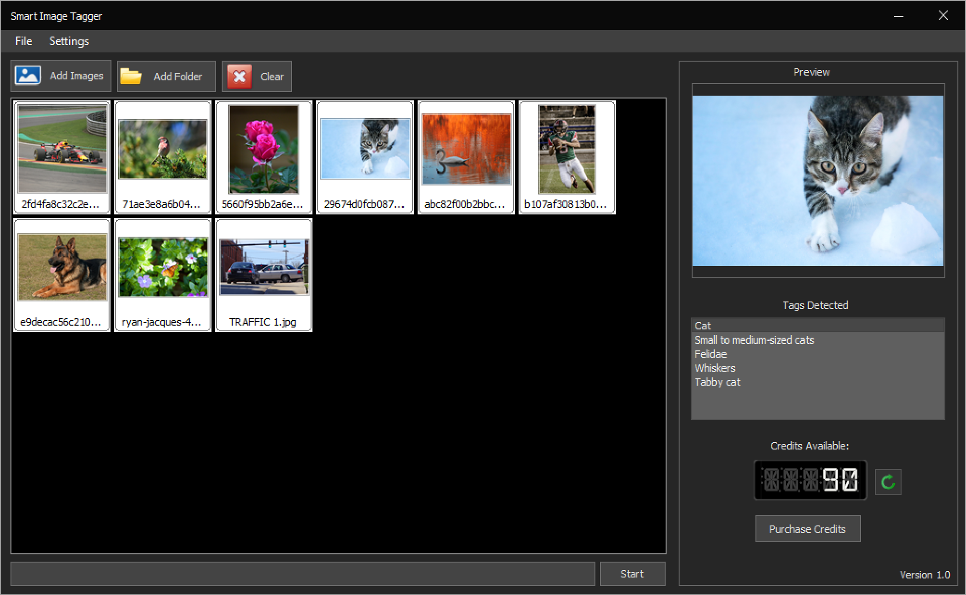 Smart Image Tagger Screenshot