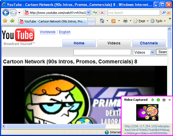 Sothink Web Video Downloader Screenshot