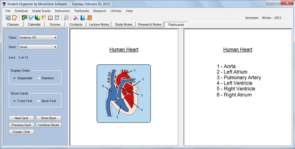 Student Organizer, Productivity Software, Organization Software Screenshot