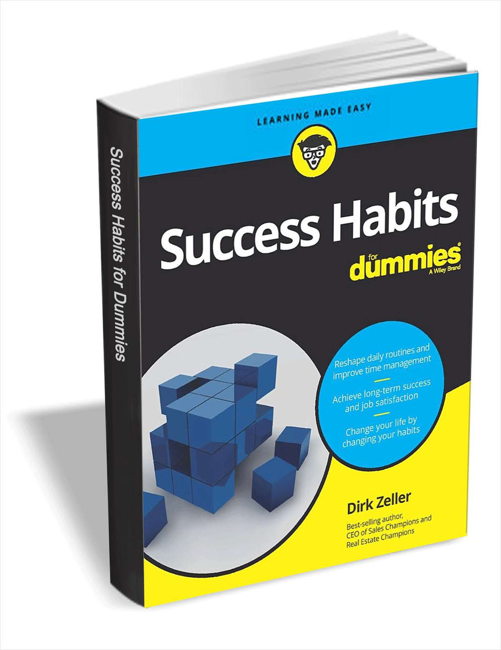 Success Habits For Dummies Screenshot