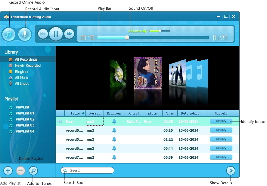 Tenorshare iGetting Audio Screenshot 10