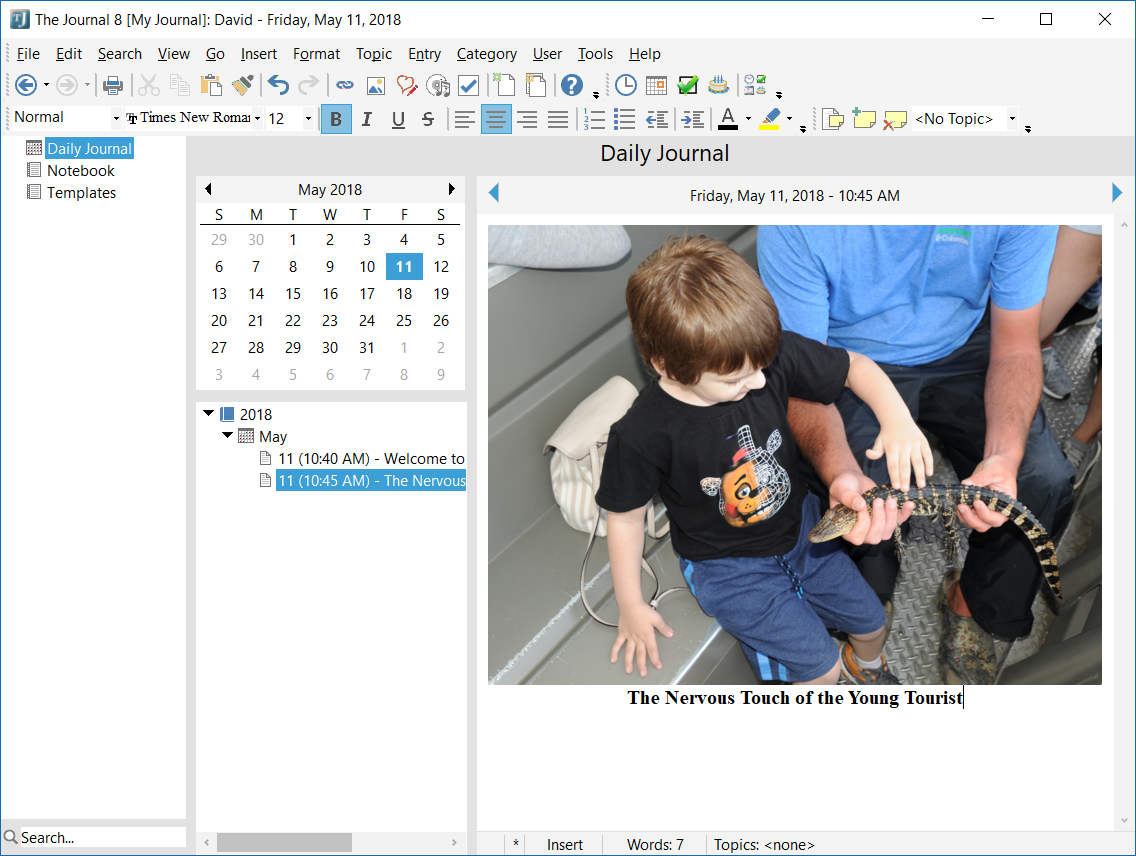 The Journal, Word Processing Software Screenshot