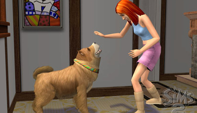 The Sims 2 Bonanza! Screenshot 9