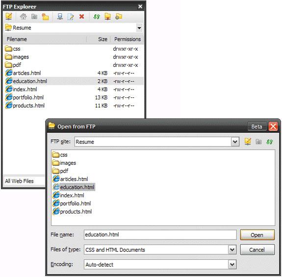 TopStyle 4, Development Software Screenshot