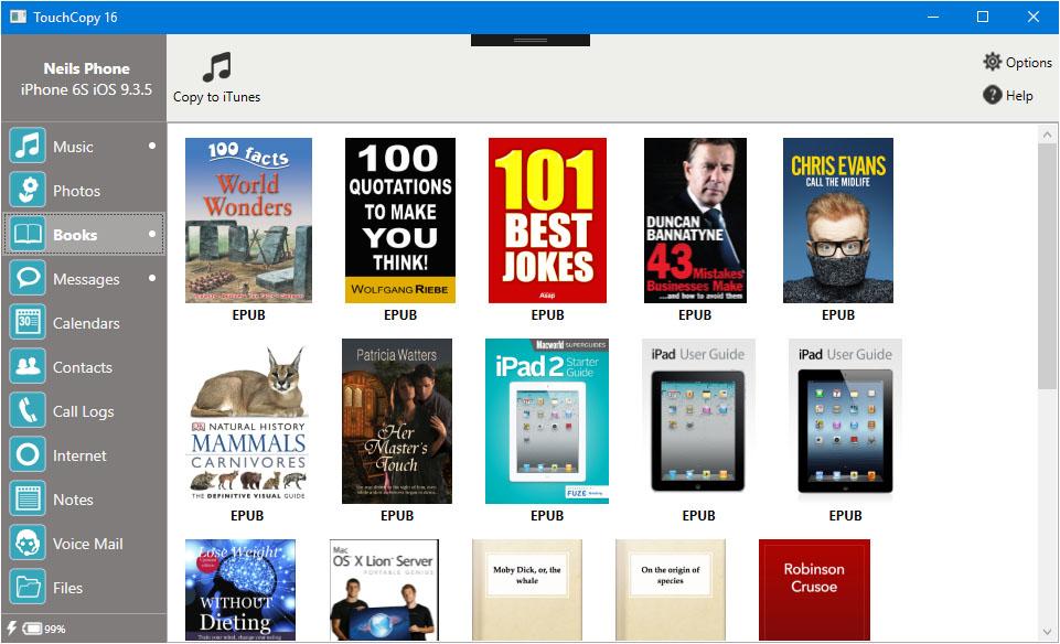 iPod iPhone iTunes Software, TouchCopy Screenshot