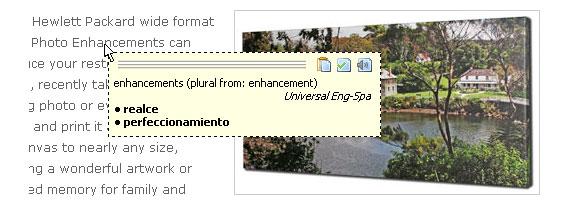 TranslateIt! Westlanguage Version Screenshot