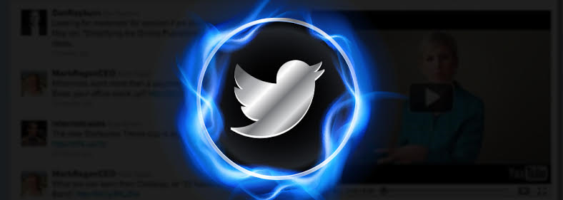 Twitter Marketing Step by Step: From 0 To 250,000 Customers, Educational Software Screenshot