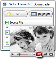 Video Converter Software, Video Converter Personal Screenshot