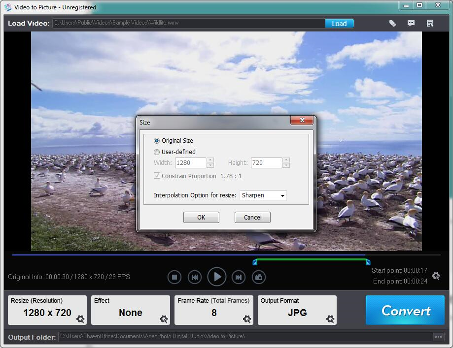 Video to Picture Converter, Photo Editing Software Screenshot