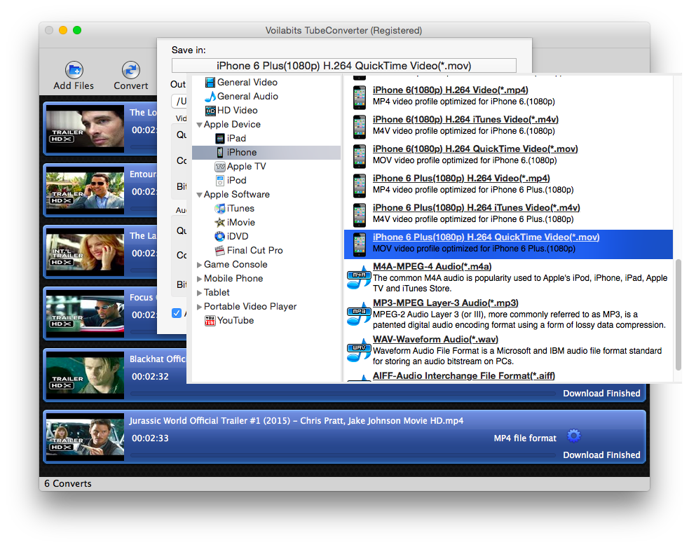 Voilabits TubeConverter for Mac, Video Converter Software Screenshot