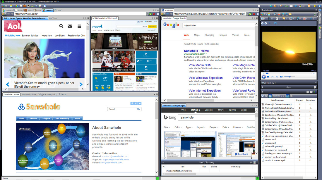 Vole Internet Expedition Professional Edition, Bookmark Manager Software Screenshot