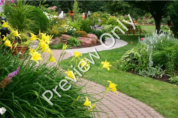 Watermark Express, Design, Photo & Graphics Software Screenshot