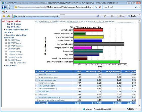 Activity Monitoring Software, WebSpy Analyzer Standard Screenshot