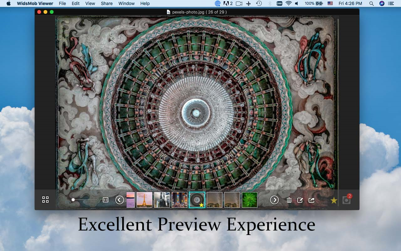 WidsMob Viewer Screenshot