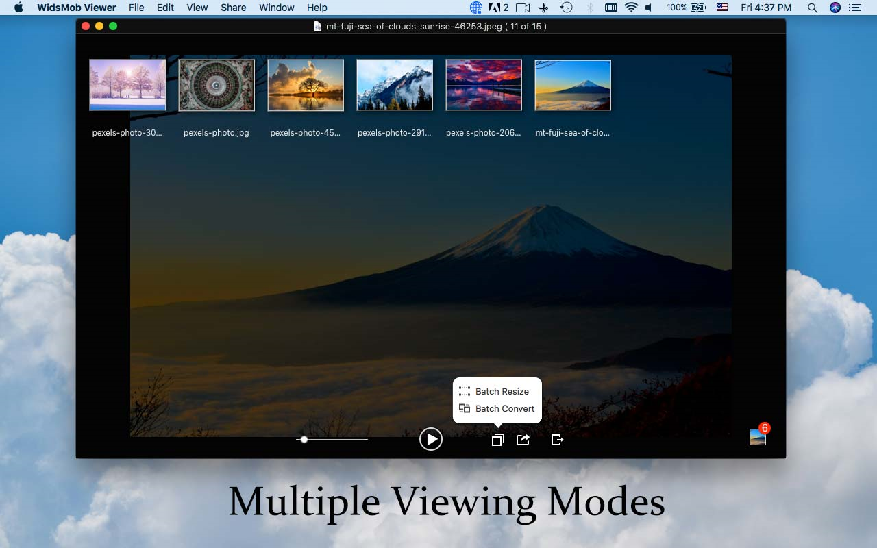 WidsMob Viewer, Image Viewer Software Screenshot