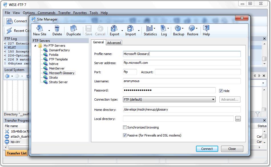 WISE-FTP, FTP Software Screenshot