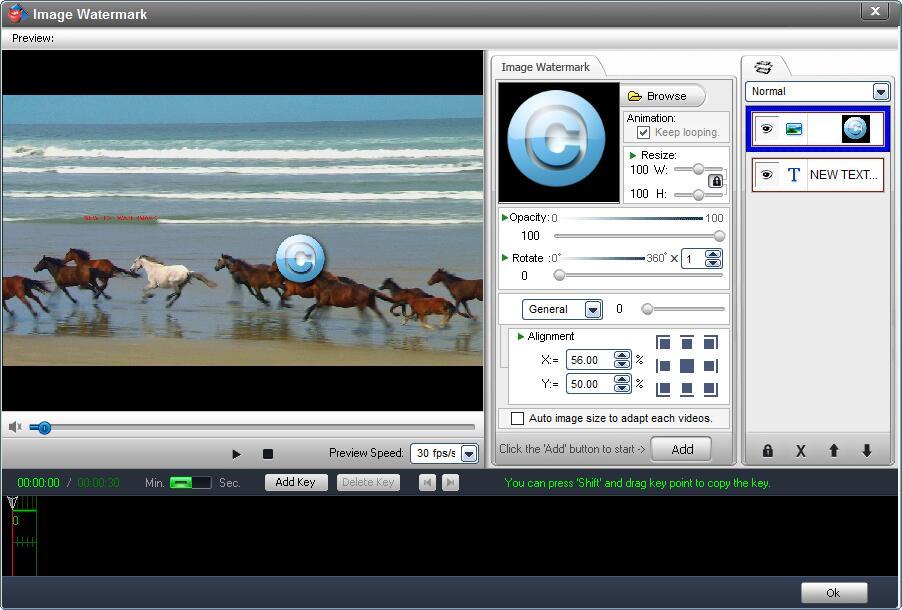 WonderFox Video Watermark, Video Editing Software Screenshot