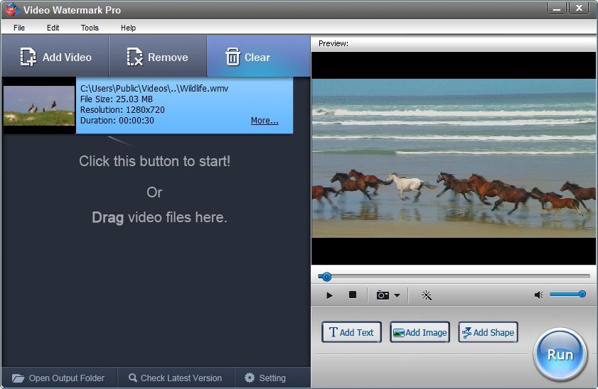 WonderFox Video Watermark Screenshot
