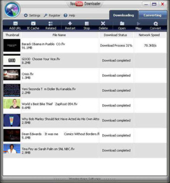 Wondershare YouTube Downloader Screenshot