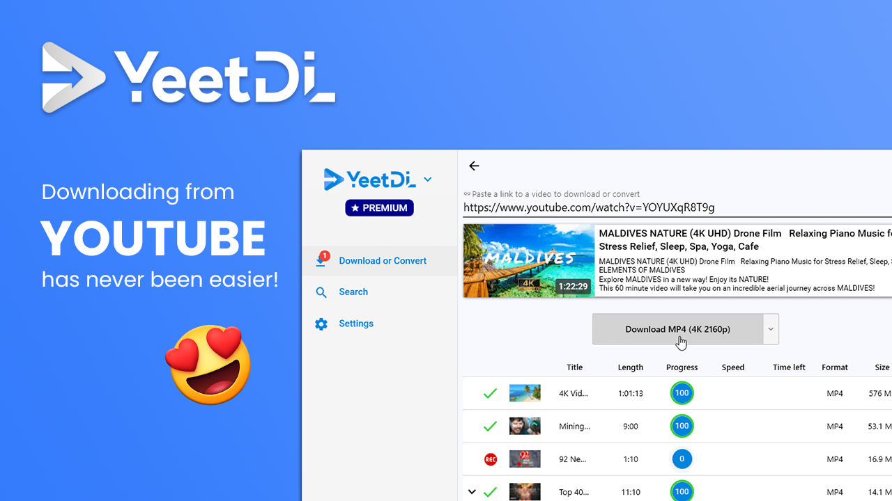 YeetDL Lifetime License Screenshot