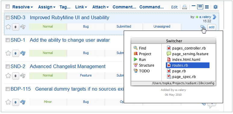Development Software, YouTrack Screenshot