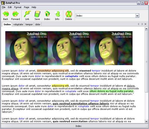 ZuluPad Pro Screenshot